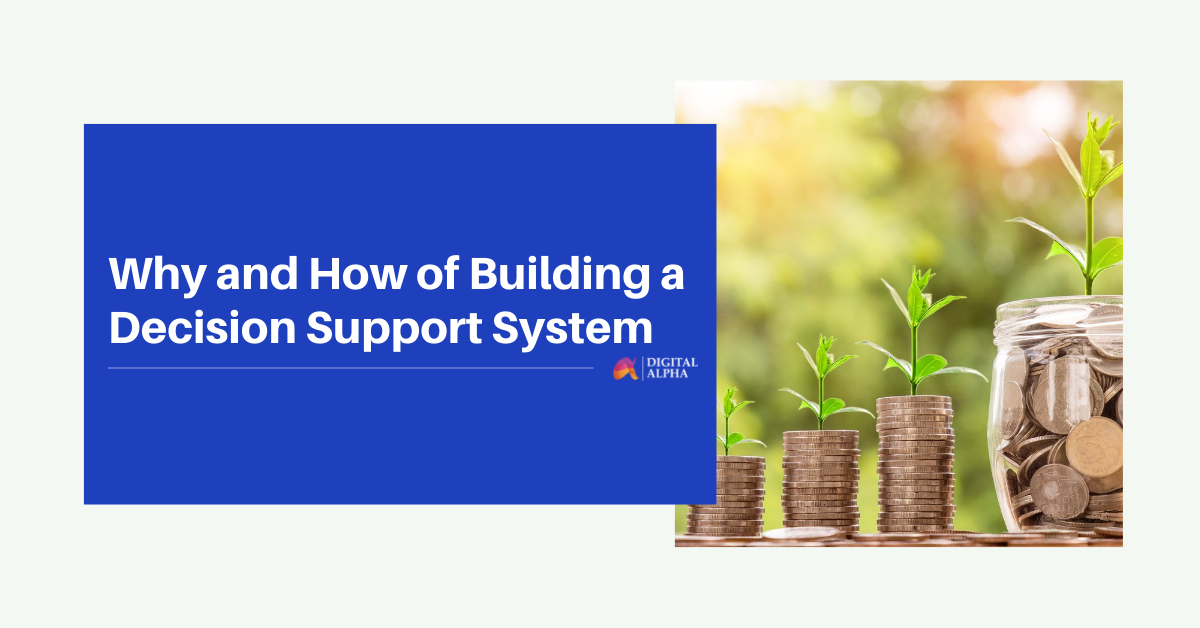 Why and How of Building a Decision Support System